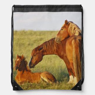 Feral Horse Equus caballus) adult smelling Drawstring Bag