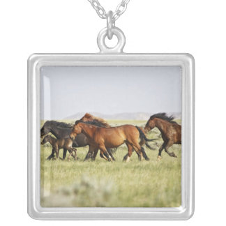 Feral Horse Equus caballus) herd of wild Silver Plated Necklace