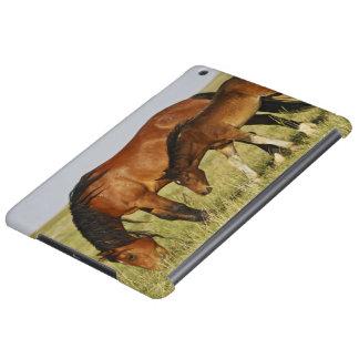 Feral Horse Equus caballus) wild horse mother iPad Air Cover