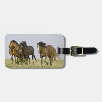 Feral Horse Equus caballus) wild horses 3 Luggage Tag