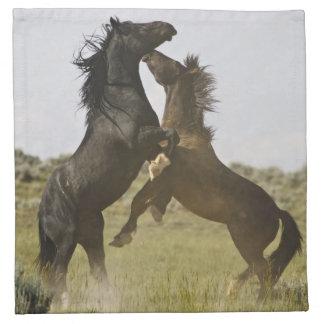 Feral Horse Equus caballus) wild horses Napkin
