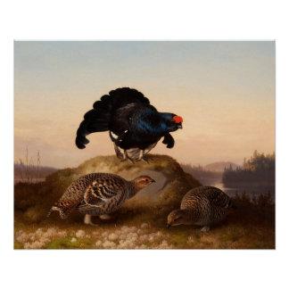 Ferdinand von Wright Orrar Black grouses 1870