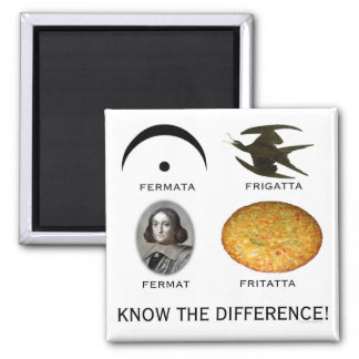 Fermatta: Know the Difference Square Magnet