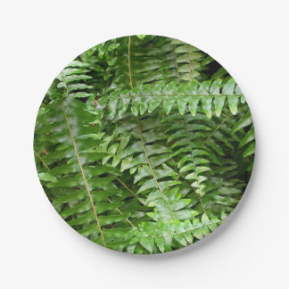 Fern Fronds I Green Nature 7 Inch Paper Plate