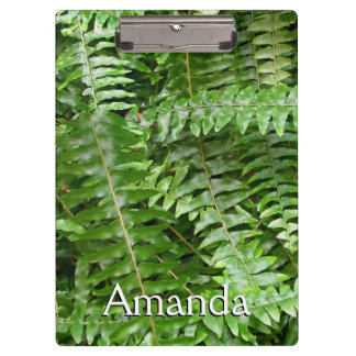 Fern Fronds I Green Nature Clipboard