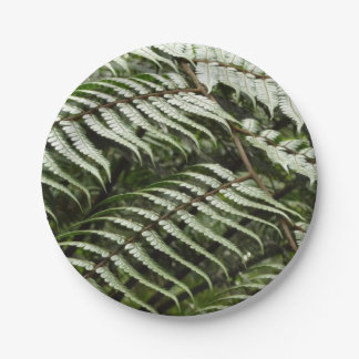 Fern Fronds II Dark Green Nature Paper Plate