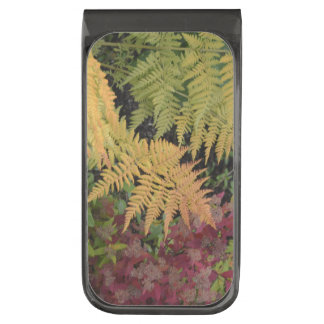 Fern Leaf Nature Landscapes Fields Meadows Fall Gunmetal Finish Money Clip