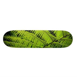 Fern leaf skate board deck