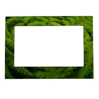 Fern Leaves Portrait Picture Frame Magnet