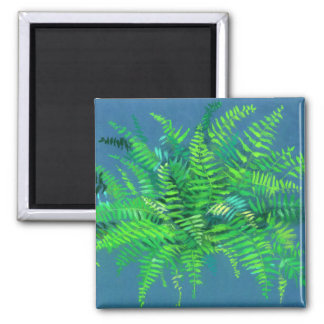 Fern leaves, pteridophyte, floral art blue & green magnet