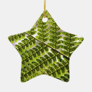Fern Macro Pattern Ceramic Star Decoration