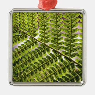 Fern Macro Pattern Christmas Tree Ornaments