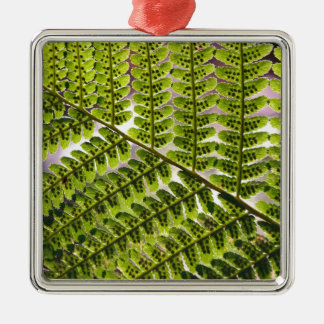 Fern Macro Pattern Silver-Colored Square Decoration