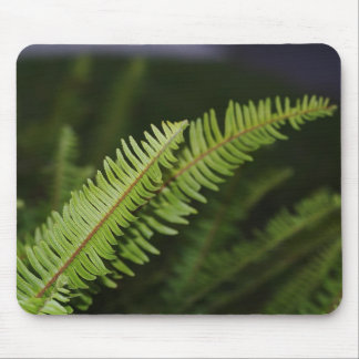 Fern Mouse Pad