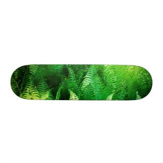 Fern Custom Skate Board