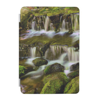 Fern Spring, Yosemite National Park, California iPad Mini Cover