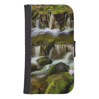 Fern Spring, Yosemite National Park, California Samsung S4 Wallet Case