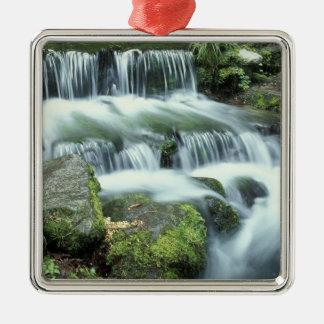 Fern Spring, Yosemite National Park Christmas Ornament
