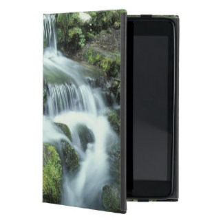 Fern Spring, Yosemite National Park Cover For iPad Mini