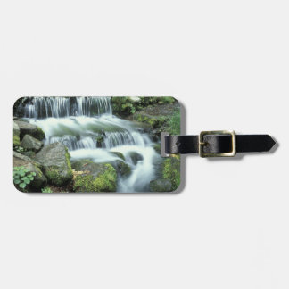 Fern Spring, Yosemite National Park Luggage Tag