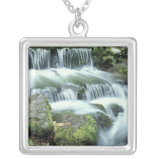 Fern Spring, Yosemite National Park Silver Plated Necklace