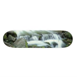 Fern Spring, Yosemite National Park Skate Board Decks