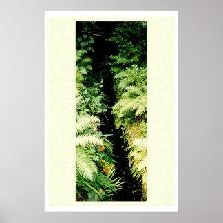 Fern Stream Print
