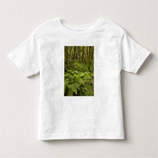 Ferns and native bush near Matai Falls, Catlins Toddler T-Shirt