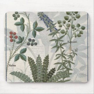 Ferns, Brambles and Flowers Mouse Mat