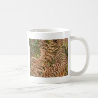Ferns in Autumn Coffee Mug