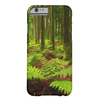 Ferns in the forest barely there iPhone 6 case