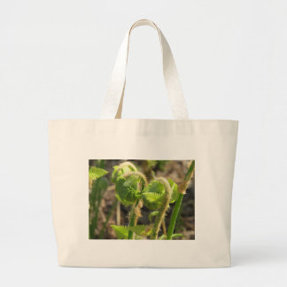 Ferns Just Waking Up in Spring Canvas Bags
