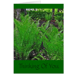 """""""FERNS""""/THINKING OF YOU"""" CARD"""