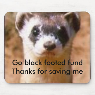 ferret12, Go black footed fundThanks for saving me Mouse Pad