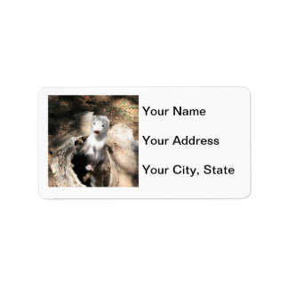 Ferret Address Label