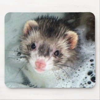 ferret bubble bath mouse mat