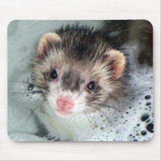 ferret bubble bath mouse pad