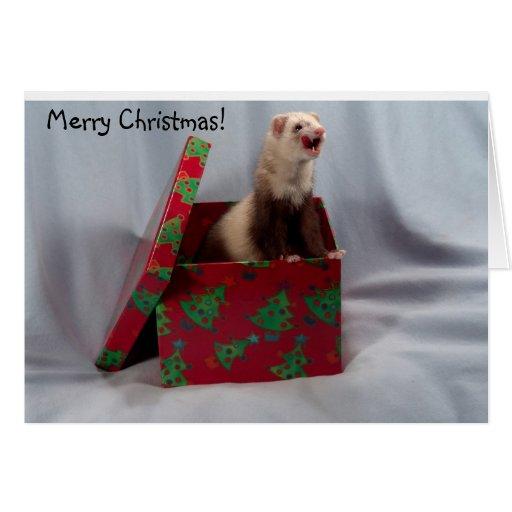 Ferret Christmas Card