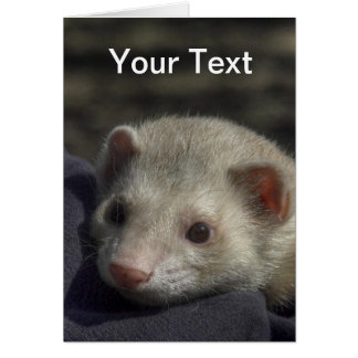 Ferret Greeting Card