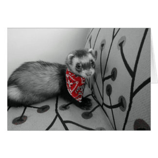 Ferret In Red Bandana Birthday Card