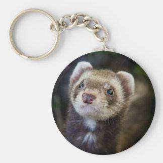 Ferret Key Ring