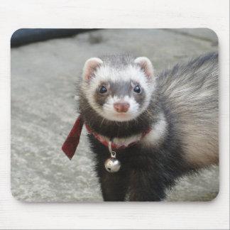 ferret mouse pad