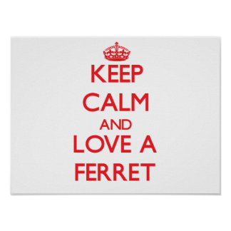 Ferret Posters