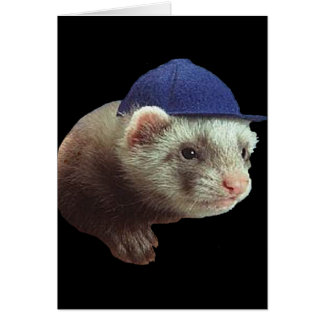 Ferret Wearing Hat Card