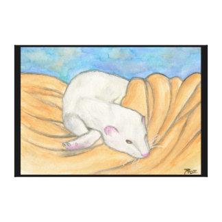 Ferret's Favorite Blanket Stretched Canvas Prints