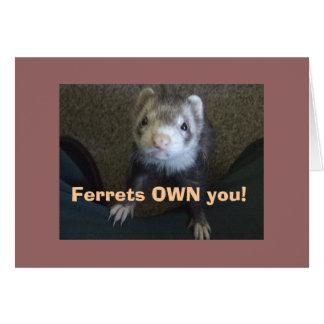 Ferrets Own You! Card