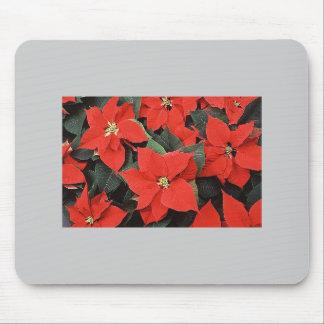 Festive  Poinsettia Mouse Pads