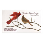 Festive Red Cardinals Pack Of Standard Business Cards