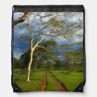 Fever Tree (Acacia Xanthophloea) By Dirt Track Drawstring Bag