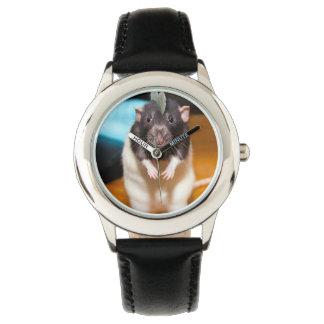FIBBS - AmFibbian Watch